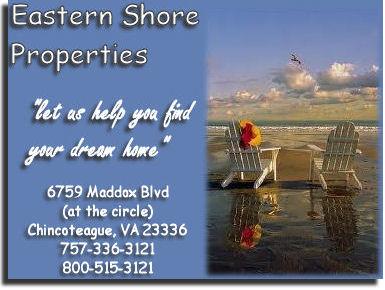 Eastern Shore Properties