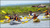 Assateague Explorer Kayak Tours & Rentals