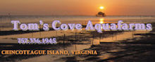 Toms Cove Aquafarms