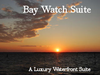 Bay Watch Suite