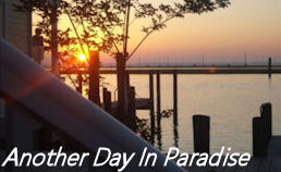 another day in paradise banner