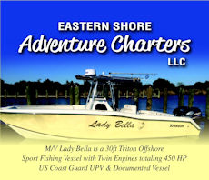 chincoteague hunting & fishing center banner ad