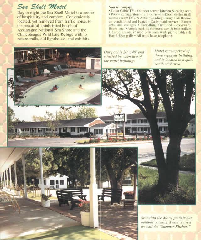 chincoteague island sea shell motel brochure. Black Bedroom Furniture Sets. Home Design Ideas